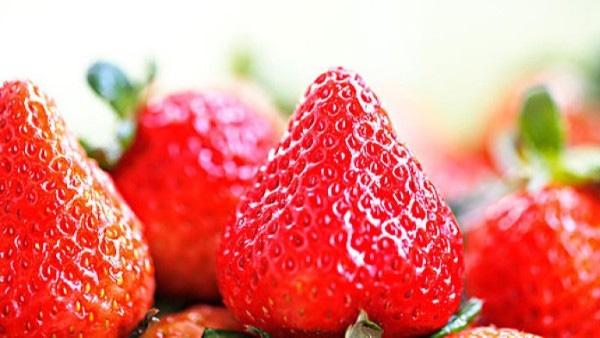 草莓大量元素水溶肥料用什么?草莓缺素症状?