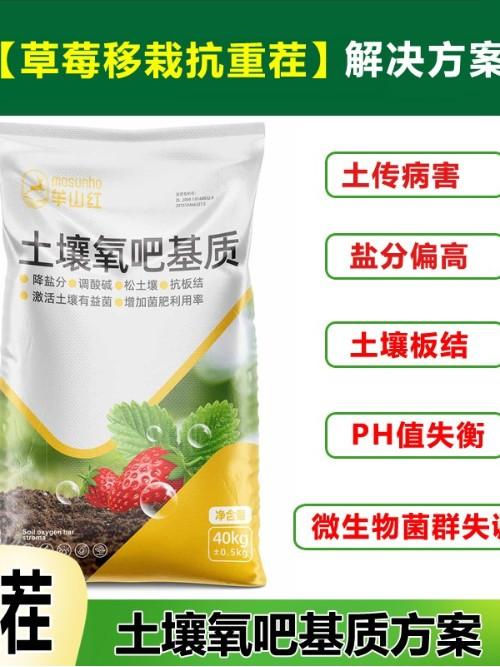 草莓苗移栽抗重茬土壤氧吧基质
