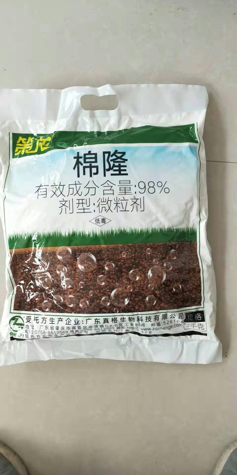 使用棉隆高温闷棚土壤消毒